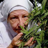 La madre superiora y su plantita